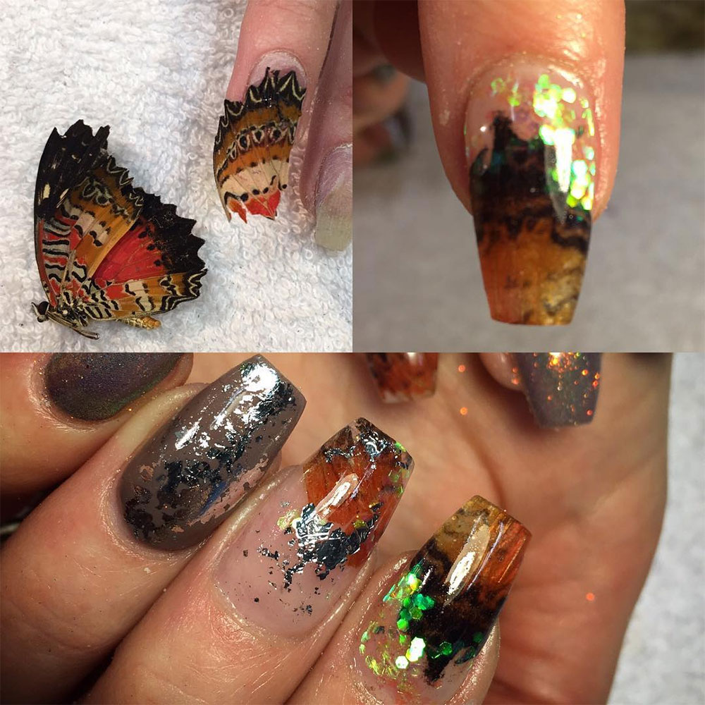 Nail Art Real Animals Deadly Manicure